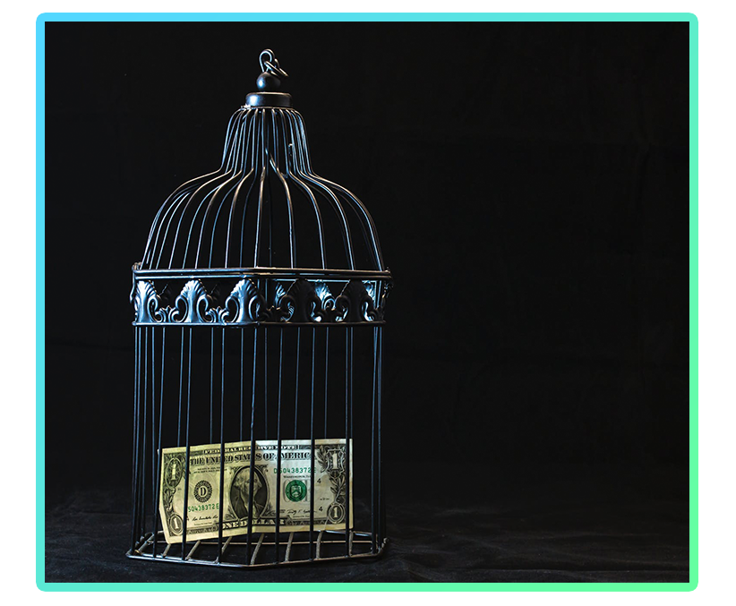 money locked up in a birdcage